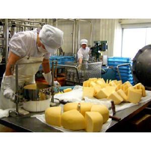 カリッとゴーダ35g ゴーダチーズをおせんべいに!(ちーずのおやつ)無添加 小林牧場物語の生乳使用 (乾酪加工品)ナチュラルチーズ kissui 05