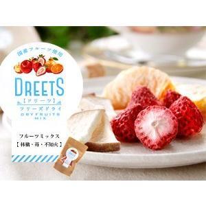 DREETS ドリーツフリーズドライ13g  国産フルーツ使用(林檎(リンゴ) 苺(イチゴ) 不知火 しらぬい(デコポン)乾燥果実の詰め合わせです|kissui