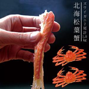 北海松葉ガニ(ズワイガニ)大2尾(ボイル)計1.2キロ 越前蟹や松葉ガニ、加能がにと呼ばれるずわいがに。解凍してすぐに食べれる松葉蟹です|kissui