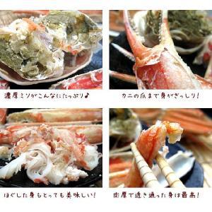 北海松葉ガニ(ズワイガニ)大2尾(ボイル)計1.2キロ 越前蟹や松葉ガニ、加能がにと呼ばれるずわいがに。解凍してすぐに食べれる松葉蟹です|kissui|04