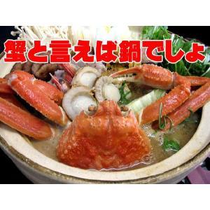北海松葉ガニ(ズワイガニ)大2尾(ボイル)計1.2キロ 越前蟹や松葉ガニ、加能がにと呼ばれるずわいがに。解凍してすぐに食べれる松葉蟹です|kissui|05