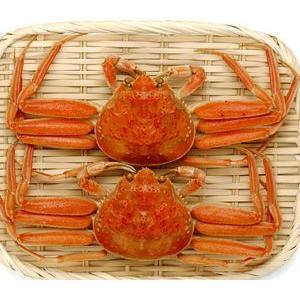 北海松葉ガニ(ズワイガニ)大2尾(ボイル)計1.2キロ 越前蟹や松葉ガニ、加能がにと呼ばれるずわいがに。解凍してすぐに食べれる松葉蟹です|kissui|06