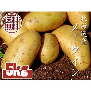 メークイン5kg(北海道産)メイクイン メークイーン(厚沢部...