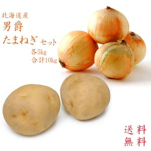 男爵いも&たまねぎセット (各5kg 合計10kg) 北海道産ジャガイモと玉ねぎ(北もみじ等) 黄玉...