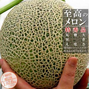 至高のメロン (特秀品) 2.6キロ以上1玉 (北海道産ふらのめろん) メロン超大玉で最高ランク特秀品|kissui