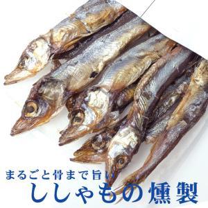 ししゃもの燻製 38g (旨みがギュッと凝縮されたシシャモのクンセイ 珍味)まるごと骨まで旨い柳葉魚のくんせい【メール便対応】|kissui