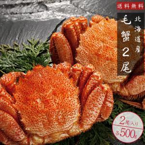 毛がに500g2尾(ボイル毛蟹)特大の北海道産毛ガニ 蟹味噌が最高のカニ 三大蟹の1つのけがに ボイル毛蟹 kissui
