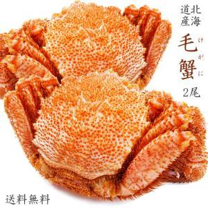 毛がに440g2尾【ボイル毛蟹】北海道産毛ガニ 蟹味噌が最高のカニ 三大蟹の1つのけがに ボイル毛蟹 kissui