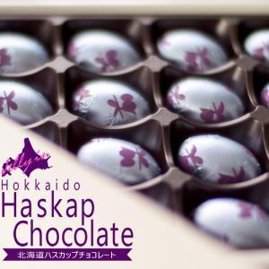 北海道ハスカップチョコレート20個入(北海道産ハスカップ使用)スイートチョコレート はすかっぷ(ハスカップゼリー仕立て)|kissui