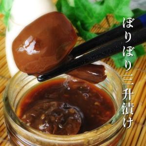 ぼりぼり三升漬け170g(ボリボリを使った北海道の郷土料理)キノコのさんしょうづけ なら茸の漬物 ご飯のお供にオススメのナラタケの惣菜 きのこ王国|kissui