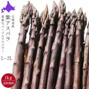 紫アスパラガス (L〜2L混合 1kg) 北海道産 (パープルアスパラ) 幻のむらさきアスパラ 送料無料※5月上旬頃から順次発送予定