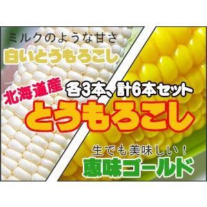 恵味ゴールド&白いとうもろこし(各3本 計6本)とうもろこし2種セット 北海道から産地直送(スイーツコーン) 送料無料※只今発送中|kissui