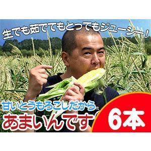 あまいんです6本セット 北海道産甘すぎるとうもろこし 朝もぎとうきび(6本)フルーツトウモロコシ 送料無料|kissui