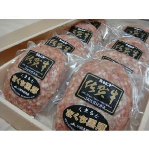 佐賀牛&きくち黒豚 紀翔特製ハンバーグ[1個150g] kisyou