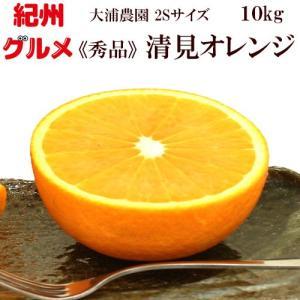 清見オレンジ 秀品 約10kg 2Sサイズ 送料無料 大浦農園 和歌山県産 2月中旬頃から順次発送予定|kisyugurumeichiba