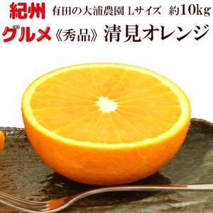 清見オレンジ 秀品 約10kg Lサイズ 送料無料 大浦農園 和歌山県産 2月中旬頃から順次発送予定|kisyugurumeichiba