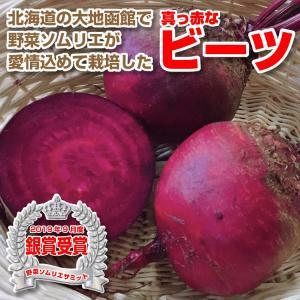 野菜ソムリエが栽培した西洋野菜の真っ赤な無農薬ビーツ3Kg|kita-marche