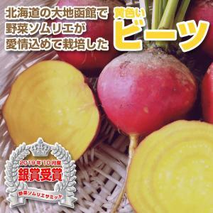 野菜ソムリエが栽培した西洋野菜の黄色い無農薬ビーツ3Kg|kita-marche