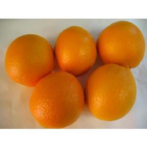 アメリカ産オレンジMサイズ5個〔C〕北港直販☆おれんじ|kitachokuhan