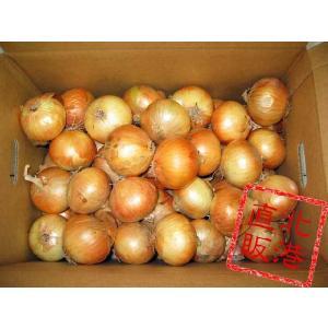 北海道産たまねぎLサイズ10kg〔C〕北港直販☆たまねぎ・玉葱・タマネギ kitachokuhan