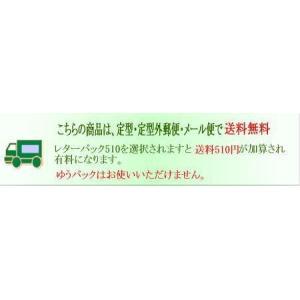 パスケース 定期入れ 革 ヌメ革 メンズ レディース スエード紐付き 2色 赤緑|kitaebisu|08