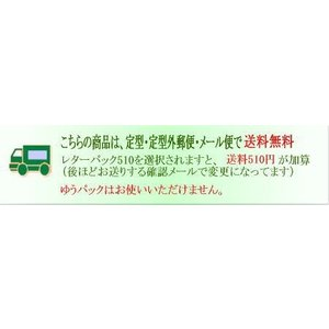 ボールチェーン10本/全長11cm玉2.4mm/革タグ/名札/チャーム|kitaebisu|03