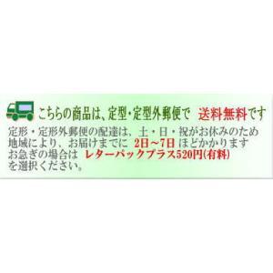 ロングストラップ 革/オイルレザー/斜め掛け専用プレーンストラップ・濃い茶/牛革|kitaebisu|07