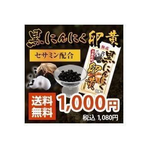 黒にんにく卵黄 サプリメント 90粒入り レビューを書いて送料無料|kitaguniokome
