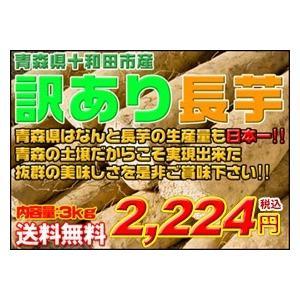 長芋 青森県産訳あり長芋3kg 送料無料|kitaguniokome