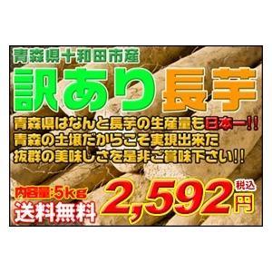 長芋 青森県産訳あり長芋5kg 送料無料|kitaguniokome