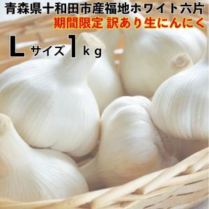 訳あり にんにく 青森県産 生にんにく ホワイト六片生にんにくLサイズ1kg 青森県産生にんにく|kitaguniokome