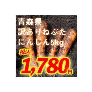 青森県産ねぶたにんじん(訳あり)5kg|kitaguniokome