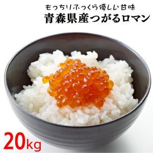 29年度 青森県産つがるロマン20kg 送料無料|kitaguniokome