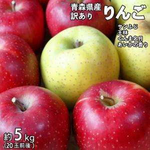 29年度 青森県産訳ありりんご5kg |kitaguniokome