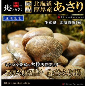 北海道 厚岸産 中サイズ あさり 3kg 【産地直送】 アサリ 貝