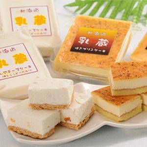 北海道乳蔵ケーキセット 送料無料 kitanohako