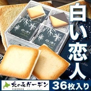 <送料込>ISHIYA(石屋製菓)白い恋人【36枚入】4セット(dk-2 dk-3)|kitanomori