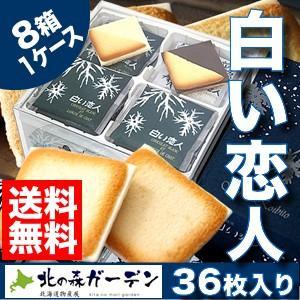 白い恋人 石屋製菓 36枚入 8箱入り1ケース 北海道お土産ギフト人気|kitanomori
