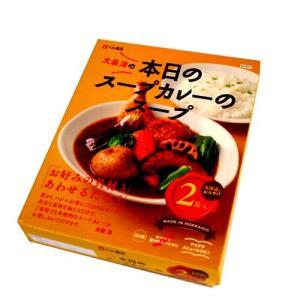 本日のスープカレーのスープ 2人前 201g×2(dk-2 dk-3)|kitanomori