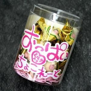 送料無料  おっぱいチョコレート 《1ケース24入》(dk-2 dk-3)|kitanomori