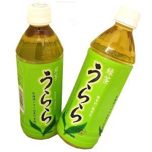 緑茶 『うらら』  500ml×24  1ケース  発送まで5日ほど頂きます 北海道お土産ギフト人気(dk-2 dk-3)|kitanomori