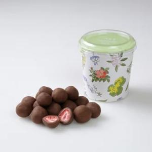 ストロベリーチョコミルク 六花亭 円筒箱入(100g) 北海道お土産ギフト人気(dk-2 dk-3)|kitanomori