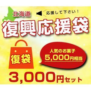 【北海道応援復袋】3000円セット 人気の北海道お土産お菓子 5000円相当 福袋|kitanomori