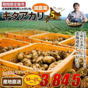 産地直送 北海道美深の29年度産じゃがいも キタアカリ5kg kitanomori