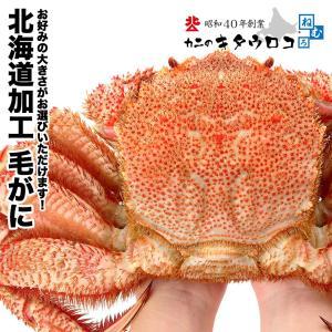 かに カニ 蟹 毛ガニ 北海道産 特大 毛がに 1kg x 1尾入 毛蟹 お取り寄せ 送料無料