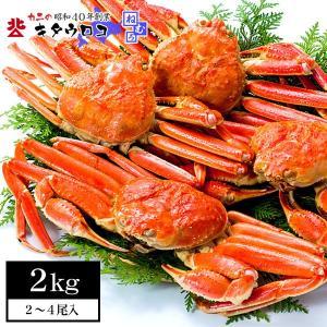 カニ お取り寄せ グルメ かに 蟹 ズワイガニ ずわいがに 姿 2-4尾入 計2kg 送料無料 かに ズワイ蟹 ずわい蟹 北海道当店加工 通販