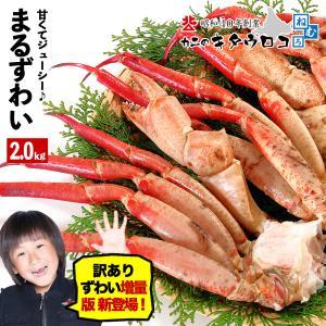 送料無料 カニのキタウロコ まるずわいがに 脚 ボイル 2kg 5〜7肩入 かに カニ 蟹 ズワイガニ 取り寄せ お歳暮 ギフトの画像