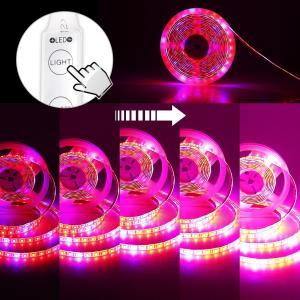 SUNVIC LED植物育成用 テープライト 室内栽培ランプ 5050SMD 水耕栽培 水槽照明 観葉植物 園芸 防水 DC 12V 5M 300SMD