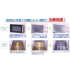 キッチンクリーナー 除菌剤 アルカリ電解水 業務用 油落とし  水拭きだけで除菌と消臭 エコPH13ウォーター 4000ml kitchen-navi-maiko 05