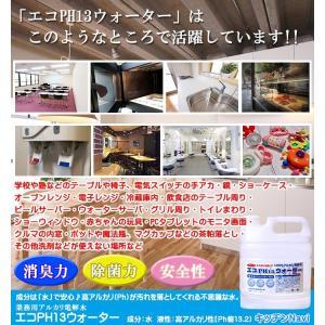 キッチンクリーナー 除菌剤 アルカリ電解水 業務用 油落とし  水拭きだけで除菌と消臭 エコPH13ウォーター 4000ml kitchen-navi-maiko 07